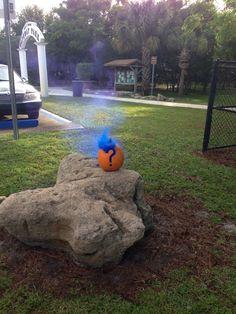 Pumpkin gender reveal w/ smoke bomb