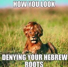 Hebrew Israelites and weaves. Don't get me wrong family. Being able to straighten our hair through healthy means is the blessing of flexibility of our hair. But killing it and ourselves with chemicals to do so is #WillieLynchSyndrome #negropeans
