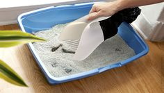 cat litter scoop with attached bag