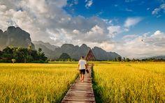 Boardwalk between rice fields in Vang Vieng, Laos