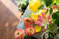 道のりを記憶に残して: 春気分満載で、ラナンキュラスのまとめ(オレンジ色とピンク色)/花・グリーンのある暮らし