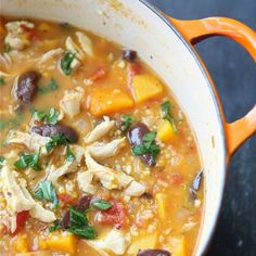 Hearty Chicken Stew with Butternut Squash & Quinoa | cookincanuck.com