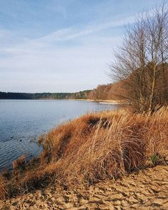 December Natural Light. Pure Nature I love you!  #nature #naturelover #lake #winter #wintertime #jezioro #zima #december #landscape #natura #naturaleza #beauty #walk #walking #travel #sunshine #poland #polska #polonia #active #sunnyday #travel #view #rest #relax #visitpoland