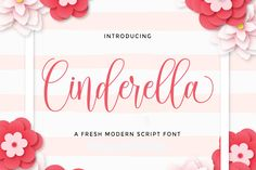 Cinderella is a gorgeously light and playful script with a distinct calligraphic feel. It's a great font for a wide. Modern Script Font, Modern Fonts, Modern Calligraphy, Great Fonts, All Fonts, Signature Book, Heart Font, Typography Logo