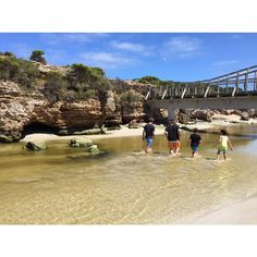 Warrnambool Standard October photo challenge. Day 1: A favourite place. This photo was taken at Stingray Bay. It was a beautiful sunny day my family and I went for a walk along the beach and then crossed over to Stingray Bay. This particular photo shows my fiancé Alex and three younger cousins Brian Max and Andrae walking through the water watching the little fish swim  #3280day1 #destinationwarrnambool by jessicaprowd http://ift.tt/1LWgNOG