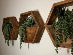 This listing is for a set of three succulent + hexagon shelves. This succulent hexagon shelf comes as pictured above with the succu… Geometric Shelves, Honeycomb Shelves, Hexagon Shelves, Window Plants, Hanging Plants, Hanging Flower Pots, Plant Shelves, Wood Shelves, Office Deco