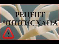 Как избавиться от паразитов Рецепт Чингисхана - YouTube