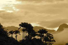 Paraty in sepia by neofito, via Flickr