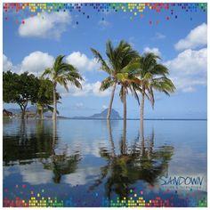 Romantic Mauritius Tour: White sand beaches, emerald sea water, private beach resorts makes Mauritius a stunning luxurious destination especially for honeymooners and adventurers. Mauritius Packages, Mauritius Tour, Las Vegas, International Holidays, White Sand Beach, Travel Alone, Tropical Paradise, Holiday Destinations, Beach Resorts