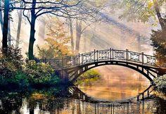 bridge over calming waters