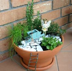jardin aromatique féérique