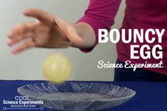 In this experiment, we are going to turn a regular raw egg into a bouncy egg. The result will be an egg that feel rubbery (like a bouncy ball) and does bounce. Just be sure not to bounce it too high unless you are ready for a messy result! Watch to the end of the…   [read more]