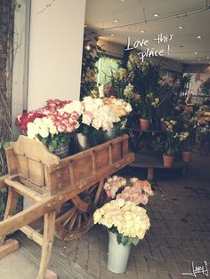 Cute Flower Shop + Chicken balls  | Inspiration Nook
