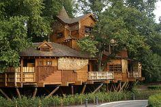 Tree House by michaelpickard, via Flickr