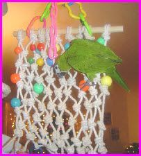 instructions for a knotted rope toy / ladder - DIY: Bird Toys & Parrot Stuff! Diy Parrot Toys, Diy Bird Toys, Parrot Pet, Cockatiel Toys, Parakeet Toys, Budgies, Parrots, Homemade Bird Toys, Rat Toys