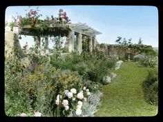 A gorgeous color photograph of the garden at Edie's family home known as Grey Gardens by Frances Benjamin Johnson (taken in 1914). Edie spent the majority of her life at Grey Gardens with her mother, Big Edie. #styleicon #modcloth