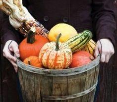 Northern Michigan Events: Fall Festivals, Harvest Festivals & Craft Shows - My North - September 2012 - Northern Michigan