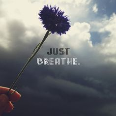 Yes... .sometimes the best thing to do is just breathe.  Looking at purple flowers to appreciate God's handiwork also helps.  ; )