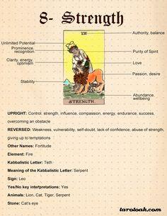 Strength Tarot Card Meanings, Keywords, Symbolism, Love, and Career Strength Tarot, Tarot Significado, Tarot Cards For Beginners, Star Tarot, Tarot Card Spreads, Tarot Astrology, Tarot Card Meanings, Meaning Of Tarot Cards, Tarot Major Arcana