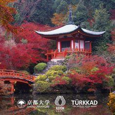 4-10 Mart 2016 tarihleri arasında içlerinde akademisyen ve basın mensuplarının da bulunduğu 49 kişilik bir grubun Japonya'nın Kyoto ve Tokyo şehirlerindeki tüm seyahat organizasyonunu üstlenen Kerim Exclusive Travel, bu organizasyondaki işbirlikleri için Delano Travel ve Nippon Travel'a teşekkürlerini sunar.
