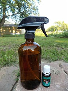 All Natural Peppermint Pest Spray