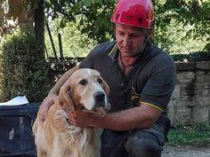 Perro es rescatado de los escombros nueve días después de terremoto en Italia