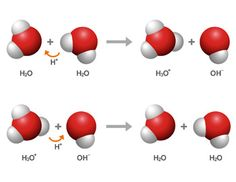 acids and bases-proton donor/acceptor