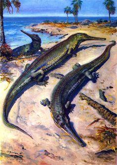 Steneosaurus by Zdeněk Burian