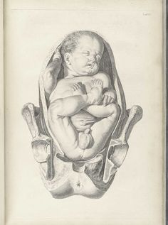 William Smellie: A sett of anatomical tables, with explanations, and an abridgment, of the practice of midwifery