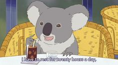My spirit animal. - Koala Funny - Funny Koala meme - - My spirit animal. Koala Funny My spirit animal. Koala Funny Funny Koala meme The post My spirit animal. appeared first on Gag Dad. Koala Meme, Funny Koala, Funny Animals, Animal Memes, Polar Bear Cafe, My Spirit Animal, Mellow Yellow, Blue Green, The Twenties
