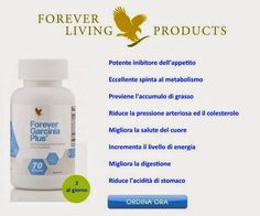 Forever Living Clean 9, Forever Living Business, Forever Living Products, Aloe Blossom Herbal Tea, Aloe Vera Gel Forever, Lose Weight Fast Diet, Herbalism, Metabolism, Weights