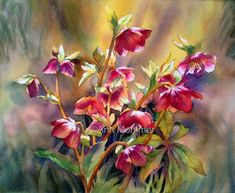 Ann Mortimer's Painting Blog: Inspiration....a strange and elusive phenomenon.