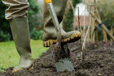 Improve your soil (in pictures) | gardenersworld.com
