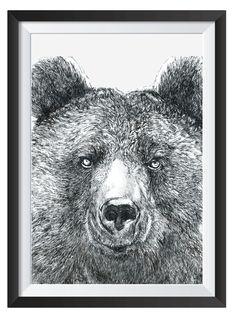 Bear illsutrated with Pen by Nicoll van der Nest