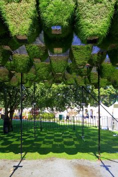 Move Over, Green Walls: Living Canopy Comes to West Vancouver