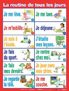 La routine/The routine of the day French Expressions, French Language Lessons, French Language Learning, French Lessons, French Verbs, French Phrases, French Teaching Resources, Teaching French, French Flashcards