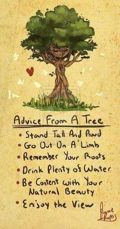 Serious message from a tree.