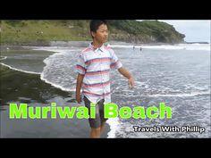 YouTube Kauri Tree, Auckland, Beach Trip, Music Songs, Santorini, New Zealand, Travelling, Club, News