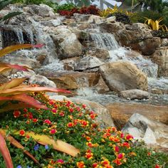 Who wouldn't enjoy a waterfall in their backyard? If you love water features, follow Atlantic Water Gardens on Instagram!