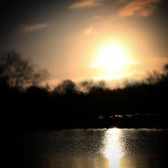 Morgensol over Strandmølledammen Ved Hagenskov Voldsted #assens #visitfyn #visitdenmark #fyn #nature #nature_perfection #sea #naturelovers #mothernature #natur #loves_skyandsunset #loveit #denmark #danmark #dänemark #landscape #assensnatur #mitassens #vildmedfyn #fynerfin #vielskernaturen #visitassens #instapic #picoftheday #morgen