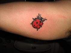Ladybug tattoo. It would be cool to get one of these on my foot. I do love to be barefoot in the grass!