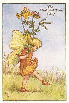 The Birdsfoot Trefoil Fairy by  Cicely Mary Barker