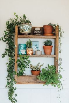 A beautiful and simple kitchen shelf, made from rustic pallet wood to hold herbs and capture the fascinating magic of plants. A beautiful and simple kitchen shelf, made from rustic pallet wood to hold herbs and capture the fascinating magic of plants. Diy Kitchen Shelves, Bathroom Shelves, Sweet Home, Home And Deco, Plant Decor, Plant Wall, Plant Pots, Pot Plants, Hanging Plant