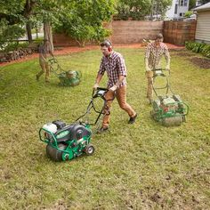 Restore a Weedy & Patchy Lawn Work a little, water a lot — and then enjoy! Reseeding is a job you can do in a weekend if you have an average-size lawn. Reseeding Lawn, The Family Handyman, Lawn Repair, Growing Grass, Growing Tomatoes, Lawn And Landscape, Creative Landscape, Landscape Edging, Landscape Designs