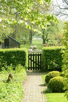close connection to the farm. The Farm, Farm Gardens, Outdoor Gardens, Landscape Design, Garden Design, Country Fences, English Country Gardens, Green Life, Garden Gates