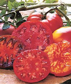 'Black Krim' Tomatoes with gorgeous dark color and tangy flavor.  'Burpee's Supersteak' Hybrid—the original 'giant' tomato with beefsteak flavor.  'Big Rainbow'—sweet, mild beauties with striking yellow and red streaked flesh.  'Brandywine'—considered the best-tasting heirloom tomato of all time. Enjoy.