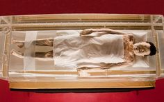 A mummy is a deceased human or animal whose skin and also organs have actually been maintained by either intentional or accidental exposure to chemicals, extreme cold, very low humidity, or absence of air, so that the recovered physical body does not decay additionally if kept in amazing and also completely dry disorders. Some authorities [ ]