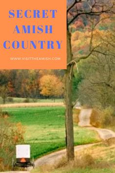 """Secret Amish Country Among all the tourist attractions in Lancaster, Pennsylvania, there is a """"secret"""" Amish country—a little-known stretch of farms on route east… Pennsylvania Dutch Country, Lancaster Pennsylvania, Amish Country Pa, Amish Store, Stuff To Do, Things To Do, Country Lifestyle, Amish Recipes, Weekend Getaways"""