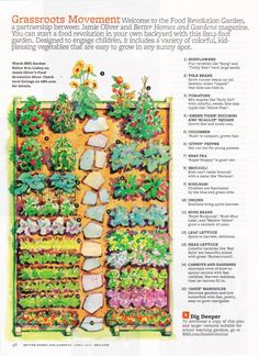 Garden layout (BHG magazine)                                                                                                                                                      More