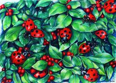 'Ladybugs in the Hedge' Poster by Heidi Cooper Smith Framed Prints, Canvas Prints, Art Prints, Hedges, Glossier Stickers, Art Projects, Vibrant, Greeting Cards